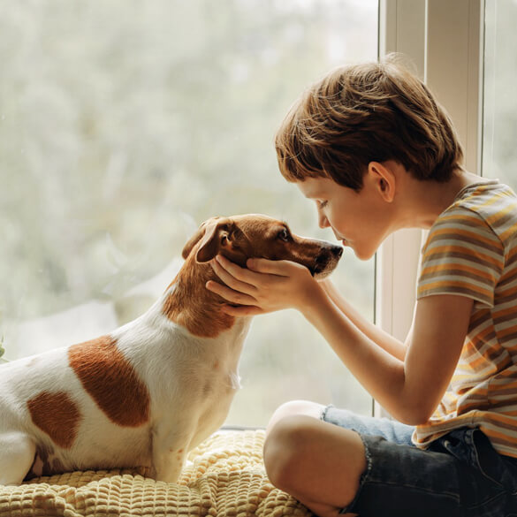 Evcil Köpekler Çocuklarda Sosyal-Duygusal Gelişimi nasıl Geliştirir?